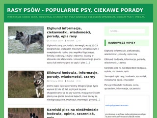Ipies.pl - blog o psach
