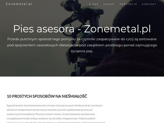 ZoneMetal.PL - the best metal