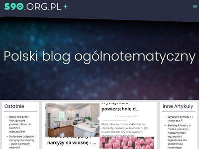 S90.org.pl - tworzenie stron