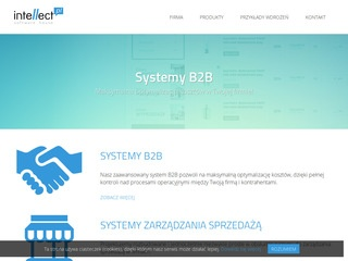 Intellect - systemy b2b, crm