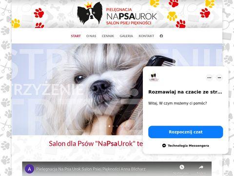 Napsaurok.zgora.pl atrakcyjne ceny